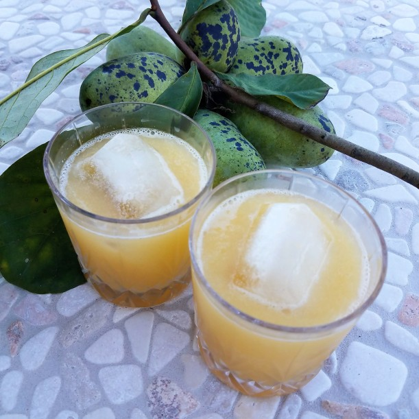 Pawpaw Whiskey Sour