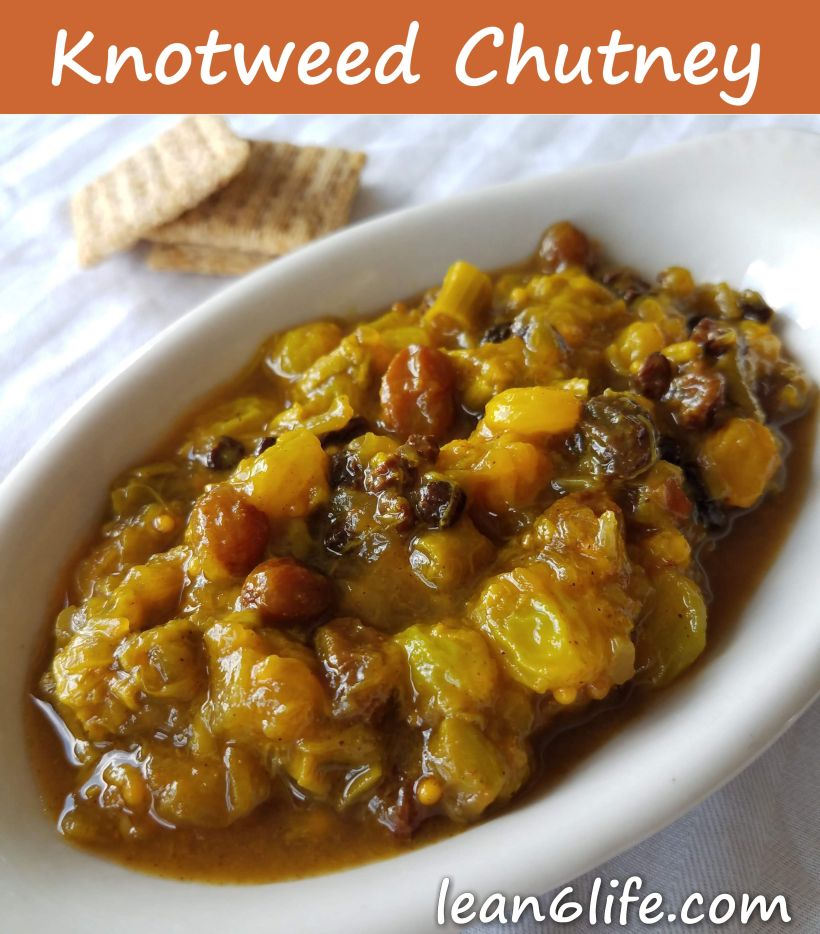 Japanese Knotweed Chutney