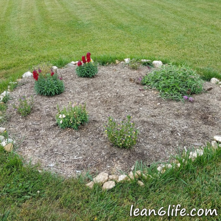 The pollinator bed