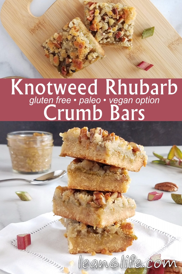 Knotweed Rhubarb Crumb Bars from Lean6Life.com - gluten free, paleo, and vegan-friendly!