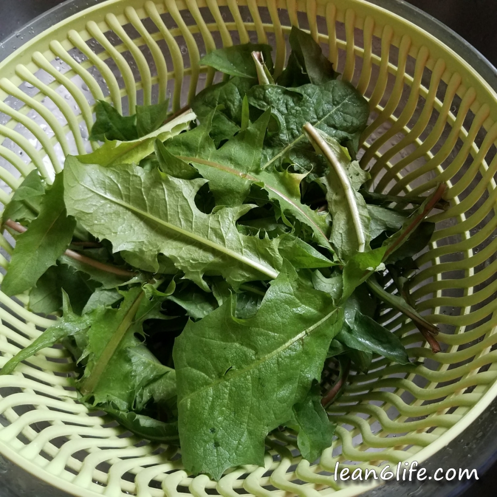 Washed dandelion leaves, ready for chips!