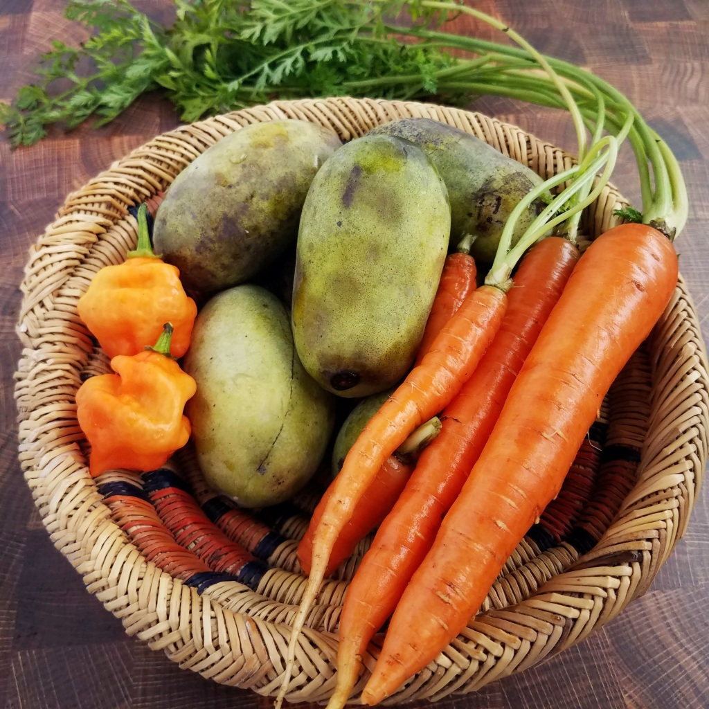 Ingredients for this week's recipe - carrots, habaneros and pawpaws from my hyperlocal foodshed