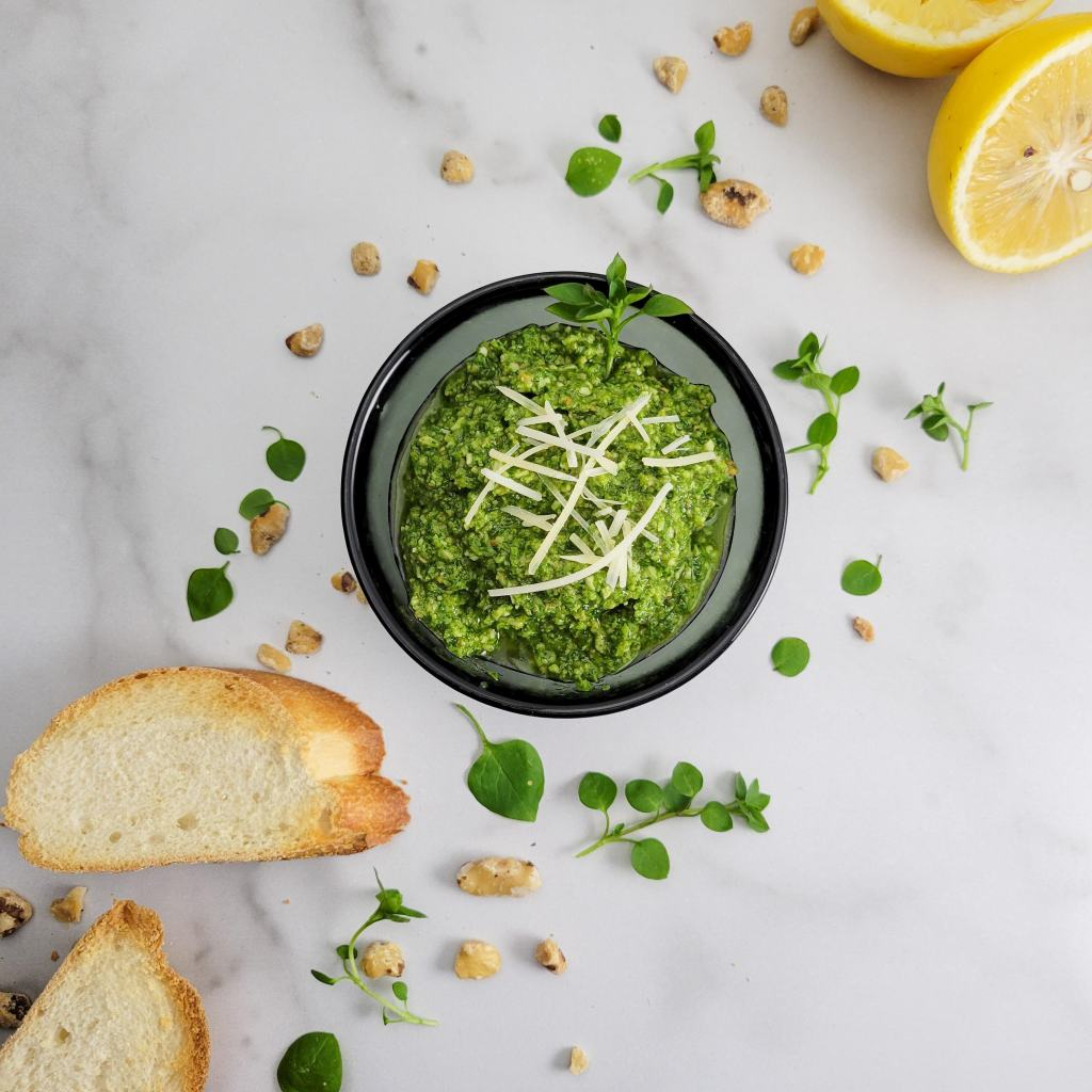 Chickweed pesto - perfect for late winter foraging!