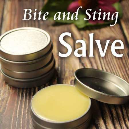 DIY Herbal Bite and Sting Salve